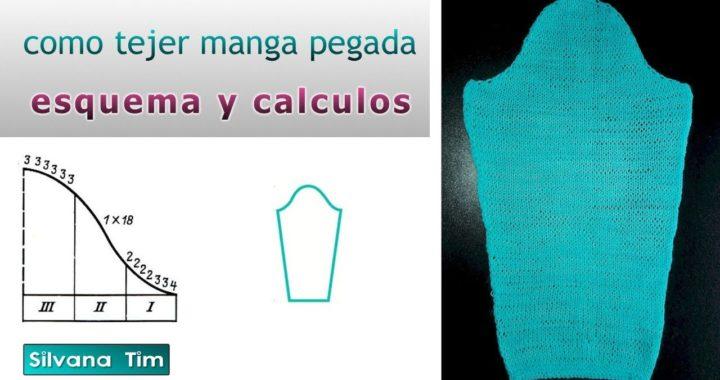 Cómo tejer MANGA pegada Tejido con dos Agujas / Silvana Tim # 607
