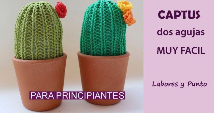 Como tejer cactus a dos agujas-Labores y Punto