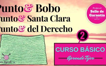Punto Bobo y Punto Santa Clara con Dos Agujas | Aprende a Tejer Pt 2