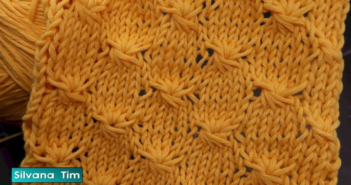 "TEJIDO CON DOS AGUJAS (dos palitos) - COMO TEJER PUNTO ""ESTRELLAS""  / silvana tim knitting # 943"