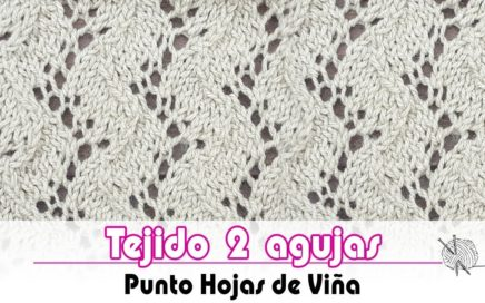 Tejido dos agujas - Como tejer el Punto viña -  How to knit the Traveling Vine stitch | tutorial
