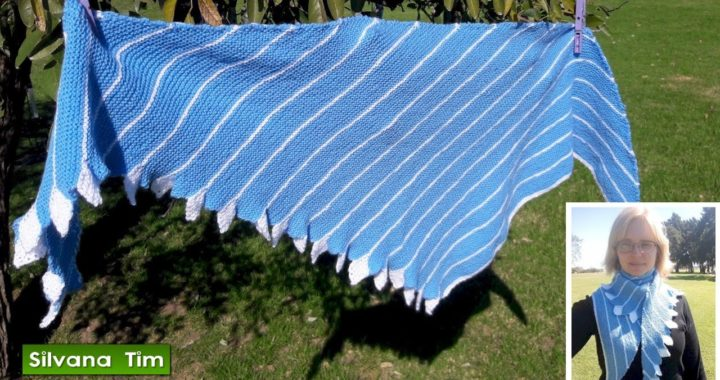 Tutorial Cómo tejer con dos agujas Chal con hojas (o chal cola de dragón) # 569