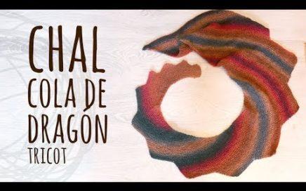 Tutorial Chal Cola de Dragón Tricot   Dos Agujas