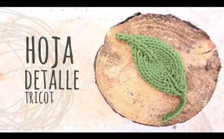 Tutorial Hoja Detalle Tricot | Dos Agujas